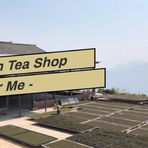 Pu erh Tea Shop Near Me - TeaSourcing