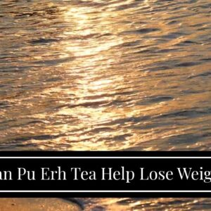 Can Pu Erh Tea Help Lose Weight