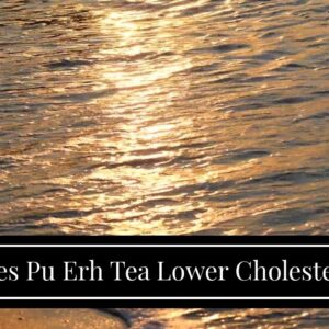 Does Pu Erh Tea Lower Cholesterol