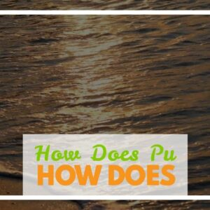 How Does Pu Erh Tea Help With Weight Loss