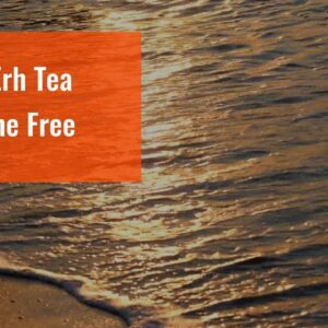 Is Pu Erh Tea Caffeine Free