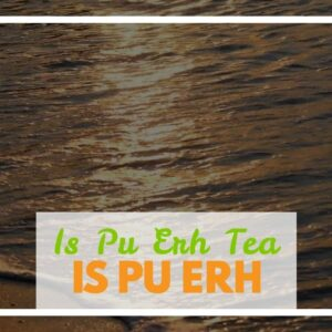 Is Pu Erh Tea Fermented