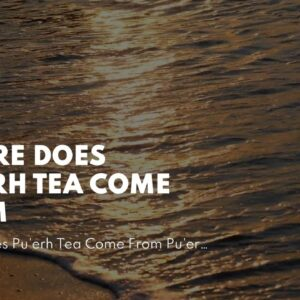 Where Does Pu'erh Tea Come From