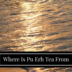 Where Is Pu Erh Tea From